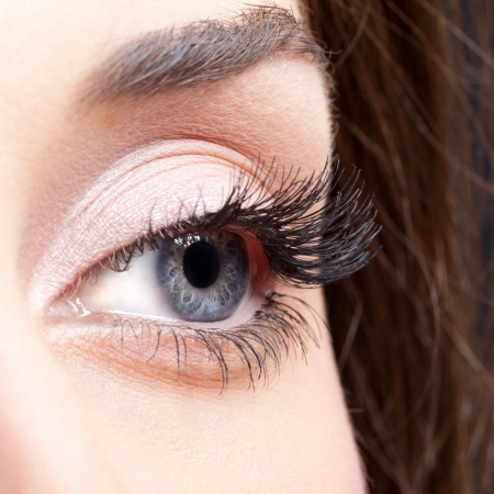 eyes close up: Closeup shot of woman eye with day makeup