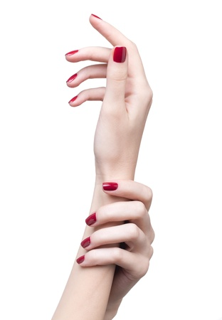 hands with womans professional red nails manicure isolated on white photo