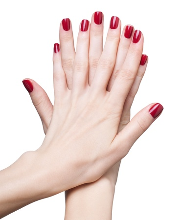 hands with woman's professional red nails manicure isolated on white photo