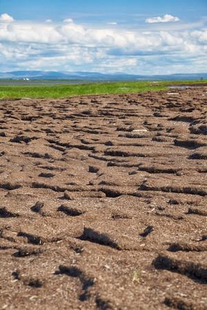 turba: Bancos de turba de río Kolyma cerca de Solución Pokhodsk en Sakha Yakutia