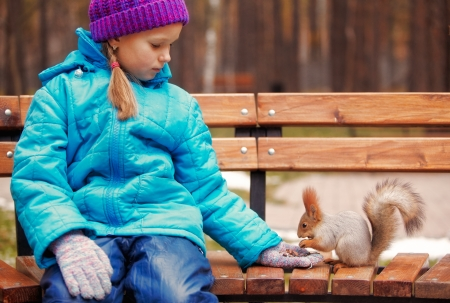 Girl feeding red squirrel in on the bench photo