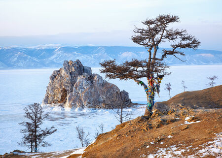 Lonely holy tree and rock Shamanka on cape Burkhan on Olkhon island in Siberian lake Baikal in winter time photo