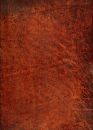 pig skin: Old leather vintage color red marsala background Stock Photo
