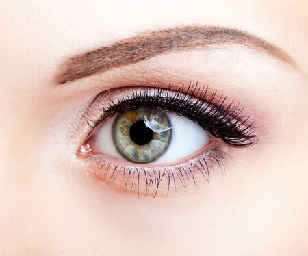 Close-up shot of female eye makeup photo