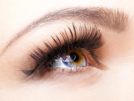Weibliches Auge mit langen Wimpern Nahaufnahme erschossen Standard-Bild