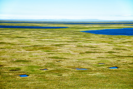 swamped: Tundra landscape in the north of Yakutia in vicinity of Chokurdakh settlement