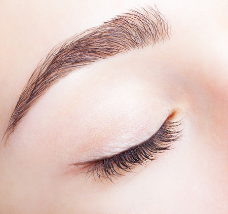 woman close up: Closeup shot of female closed eye and brows with day makeup