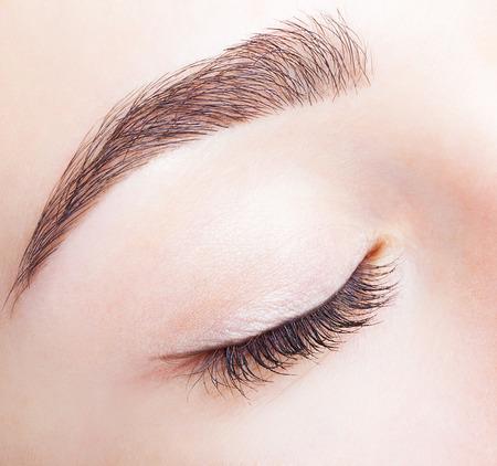 oči: Detailní záběr ženy zavřel oči a obočí s denním make-up