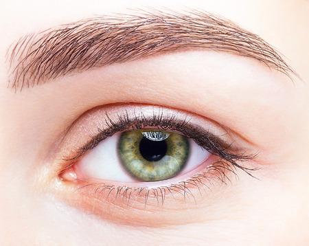 Close-up shot van vrouwelijke groene pistache kleur lachende oog met de dag make-up