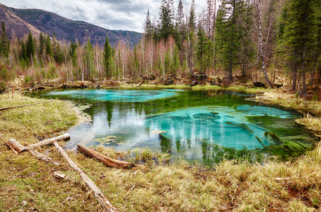 altay: So cold blue geyser lake in Altay mountains with old logs on foreground Stock Photo
