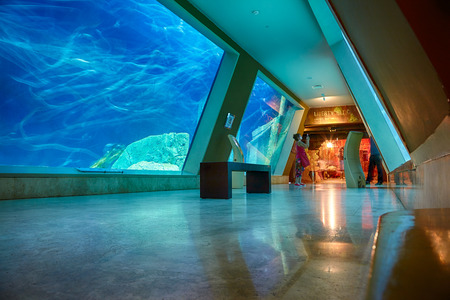 istanbul: ISTANBUL, TURKEY  JULY 11, 2014:  The interior of Istanbul Sea Life Aquarium TurkuaZoo. The entrance to the hall of Liberty Ship wreck.