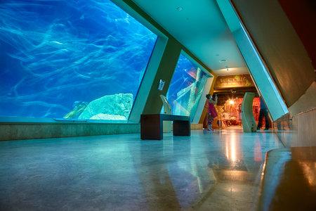 ISTANBUL, TURKEY  JULY 11, 2014:  The interior of Istanbul Sea Life Aquarium TurkuaZoo. The entrance to the hall of Liberty Ship wreck.