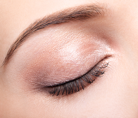 closed eye: Closeup shot of female closed eye and brows with day makeup