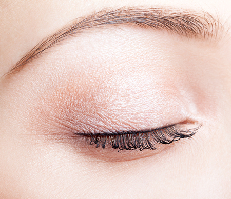 eyelid: Closeup shot of female closed eye and brows with day makeup