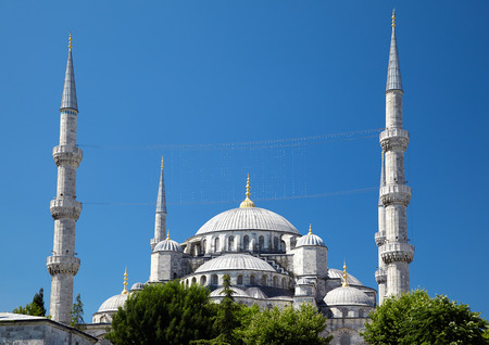 sultan: The view of Sultan Ahmed Mosque - Blue Mosque  from Sultan Ahmet Park, Istanbul, Turkey.