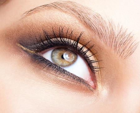 eyelashes: Closeup shot of woman eye with day makeup