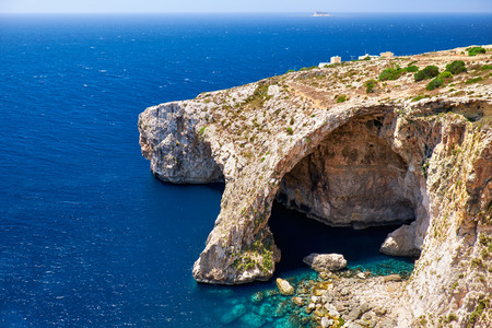 century plant: Blue Grotto - one of nature landmarks on Malta island