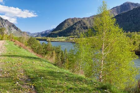 chemal: Altai river Katun near mountain village Chemal, Siberia, Russia