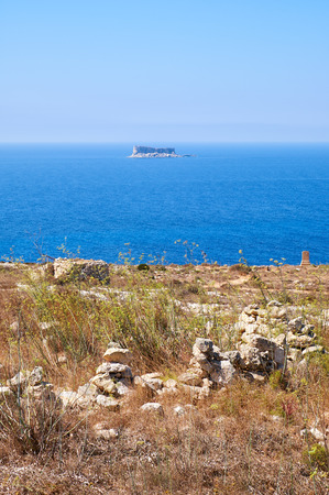 scorched: The view of Filfla islet with the part of Qrendi coast scorched earth  on the foreground. Malta