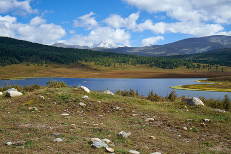 larix sibirica: View on small lake in the vicinity of the mountain pass Ulaganskiy. Altai, Russia Stock Photo
