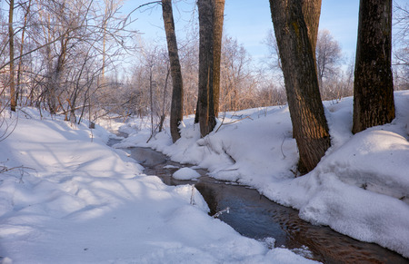 creek: Small winter stream among poplar trees under snow in winter. Novosibirsk, Russia