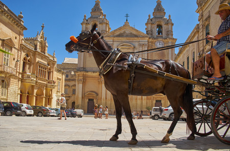 taxista: MDINA, MALTA - JULY 29, 2015: The Tourist horse carriage on the St Pauls Square in front of St Pauls Cathedral, Mdina, Malta. Editorial