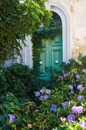 The ivy covered green door in the wall of old house with the footpath to the porch overgrown with the violet bindweed. Malta