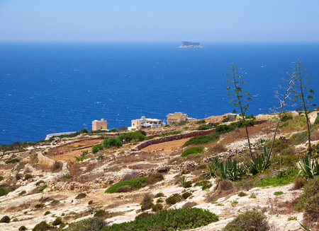Agave plants  on south coast of Malta island with view on Mediterranean sea