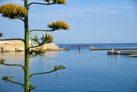 The view of the entrance to the Grand Harbor with agave flower on the foreground. Valletta. Malta
