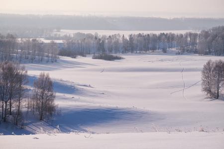Birch trees under hoarfrost in snow field in winter season. Altai, Siberia, Russia Stock Photo