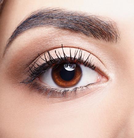 Closeup colpo di donna marrone occhio con il trucco di giorno Archivio Fotografico