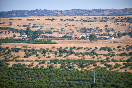 portugal agriculture: View on Alentejo country province, Portugal