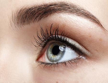Close-up macroportret van vrouwelijk gezicht. Menselijk oog met dag schoonheid make-up en lange natuurlijke wimpers. Meisje met perfecte huid en sproeten.