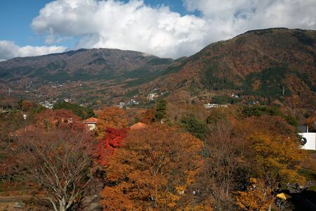 The picturesque autumn foliage on the mountain slopes at Hakone. Kanagawa. Japan