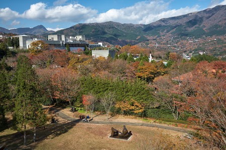 The picturesque autumn foliage on the mountain slopes near Hakone Open Air Museum. Hakone. Kanagawa. Japan