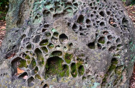 The cavitated volcanic lava stone boulder on the territory of the old shrine. Japan Stok Fotoğraf