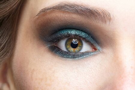 Closeup macro shot of human female eye. Woman with natural evening vogue face beauty makeup. Girl with perfect skin and blue eyes shadows