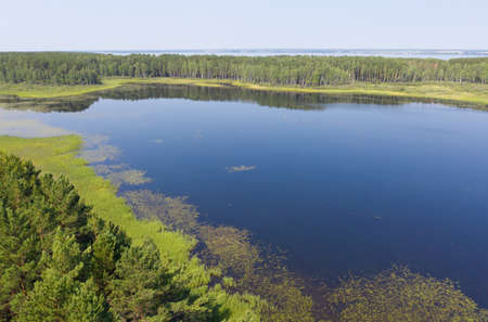 Aerial photo of forest boggy lake in the Karakansky pine forest near the shore of the Ob reservoir. Siberia, Russia 免版税图像 - 152749447