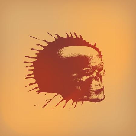 skull vector: Skull  Vector format