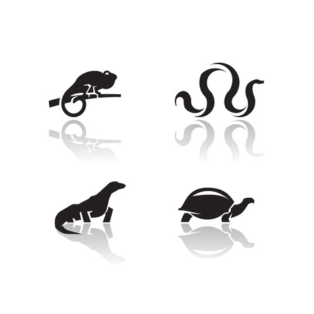 lizard: Animals icons  Vector format
