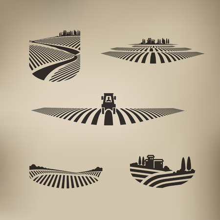 vineyard plain: Harvest  Vector format