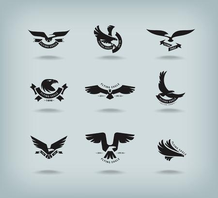 hawks: Formato Eagle Vector Vettoriali