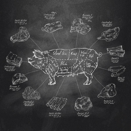 butcher: Pig  Vector format