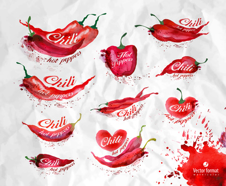 chili: Pepper. Vector format