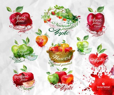 Apples.Vector format Illustration
