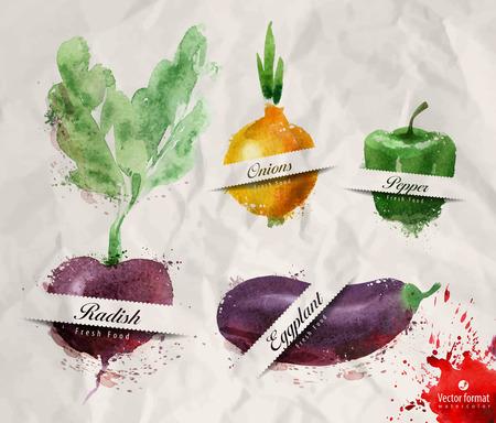 Vegetables. Vector format Vector