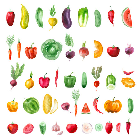 Vegetables. Vector format Çizim