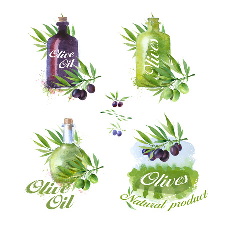 oil crops: Olive icons. Vector format Illustration