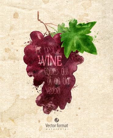 Grapes.  Vector