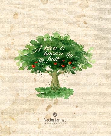 arbol de manzanas: Árbol.  Vectores